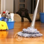 House-Cleaning-Houston-810x522-1c2dc03d
