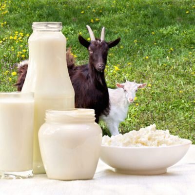 goat-and-goat-milk-1200x929