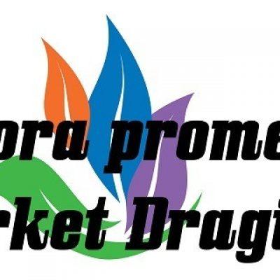 logo za prezentaciju-d8a5d144